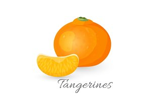Tangerine tropical fruit isolated on white. Mandarin orange realistic vector