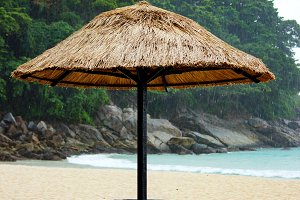 Tropical rain at sandy coastine