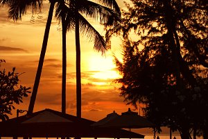 Beach sunset at the coast line