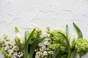 White textured background with fresh spring flowers