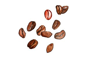 Watercolor coffee beans isolated