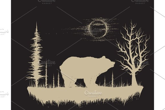Bear In The Strange Forest