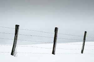Stakes and barbed wire in the snow