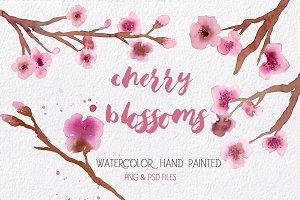 Cherry Blossoms- Watercolor clipart