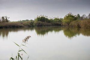 Llobregat lake