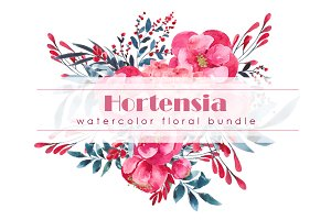 Hortensia - Watercolor floral bundle