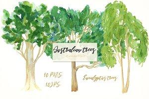 Australian native trees. Watercolor