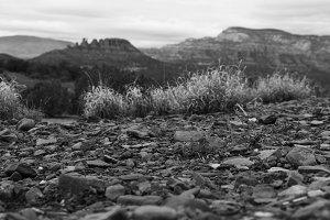 Black and White Red Rocks in Sedona