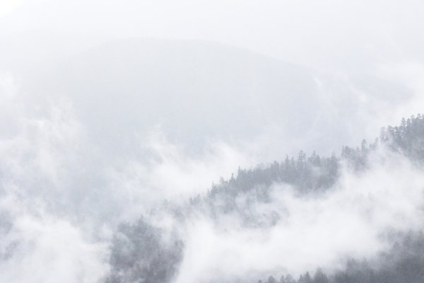 Fog on the Mountains