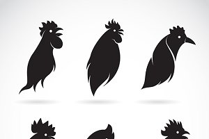 Vector image of a chicken head.
