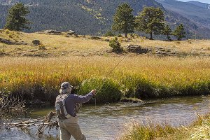 Vertical Fly Fishing