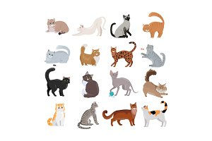 Set of Icons with Cats. Flat Design Vector.