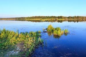 Summer lake view.