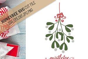 Mistletoe Swag