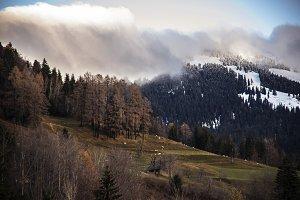 The end of autumn landscape