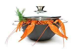 crayfish in pan