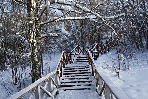 Staircase in the winter park