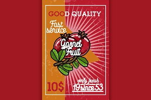 Color vintage fruit banner