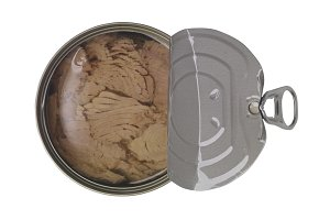 Canned soy free albacore white meat tuna packed in water