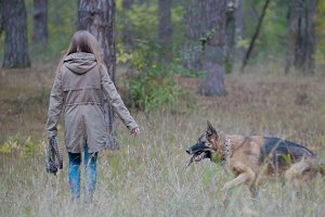 Young female playing with her pet - german shepherd in autumn forest