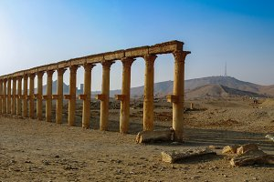 Panorama of Palmyra columns and ancient city, Syria