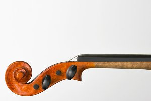 Violin neck shot closeup