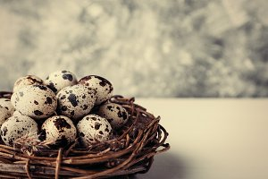 Quail eggs in nest on table
