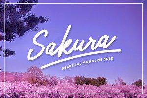 Sakura Bold