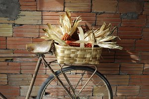 Wooden basket on an antique bike