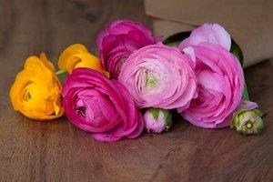 Beautiful Ranunculus Flowers