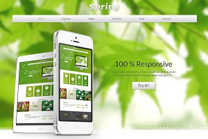 Spring Bootstrap Responsive Theme