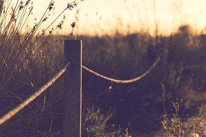 back lighting countryside land
