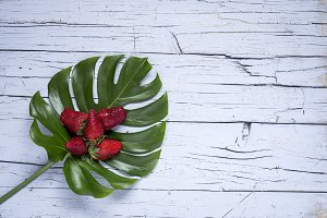 Tropical palm leaf With strawberries