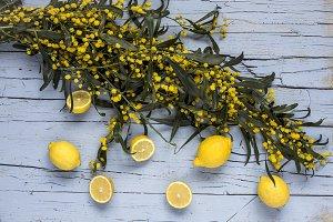 Mix of fresh lemons
