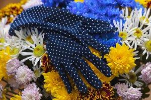 Gloves on flowers