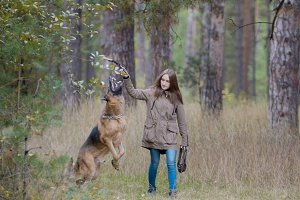 Young female playing with her pet - german shepherd - walking on a autumn forest