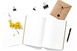 Sketch book and mimosa flowers