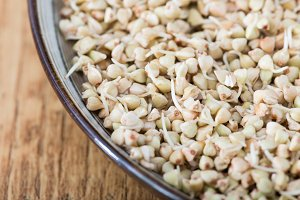 Fresh Green Buckwheat Sprouts