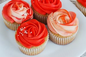 Vanilla cupcakes decorated with a red rose from a cream on a white background