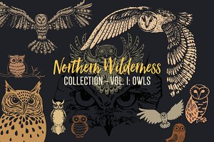 Northern Wilderness Collection: Owls