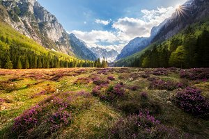 Spring in Julian Alps