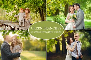 Green Branches photo overlays