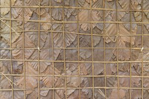 Dry leaves the decorative fence