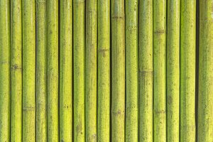 green paint bamboo fence