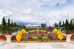 Dalat flower park in Dalat city, Vietnam