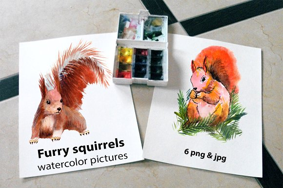 Furry Squirrels Watercolor Pictures