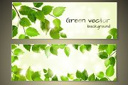 Green leaves banners