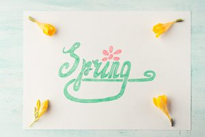 Spring word spelling by hand lettering and yellow flowers
