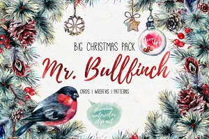 Mr.Bullfinch Watercolor ClipArt Xmas