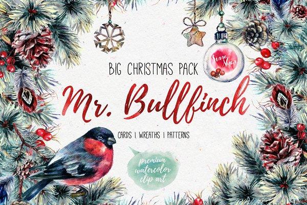Mr.Bullfinch Watercolor ClipArt Xma…